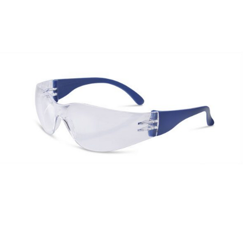 Safety spectacles BEESWIFT, mod. EVERSON